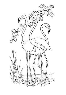 pictures of flamingos to print free dearie dolls digi stamps april 2015 flamingos of to pictures print