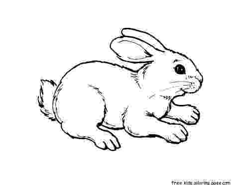 pictures of rabbits for kids print out animal rabbit pictures colouring pages for of for kids rabbits pictures