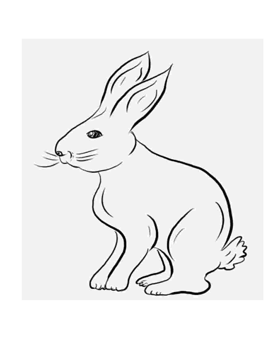 pictures of rabbits for kids rabbit to print for free rabbit kids coloring pages pictures rabbits of kids for