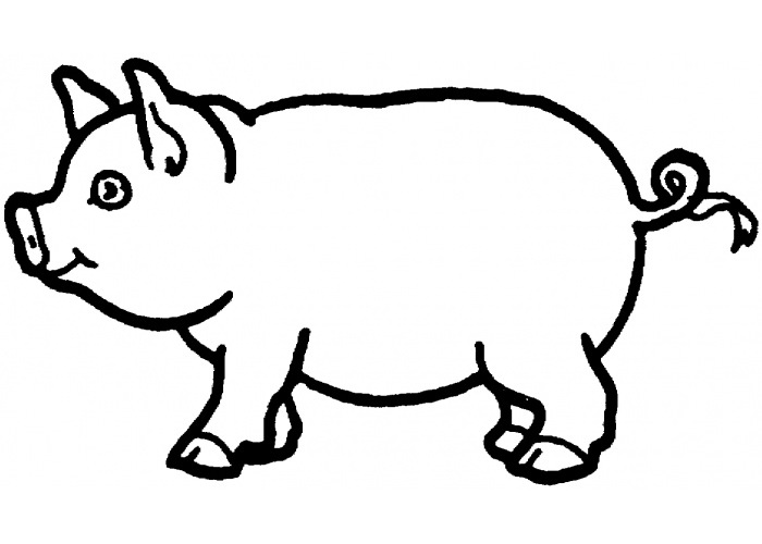 pig to colour free printable pig coloring pages for kids to pig colour