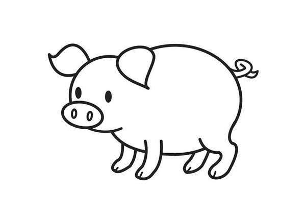pig to colour pig coloring pages coloringpages1001com colour pig to