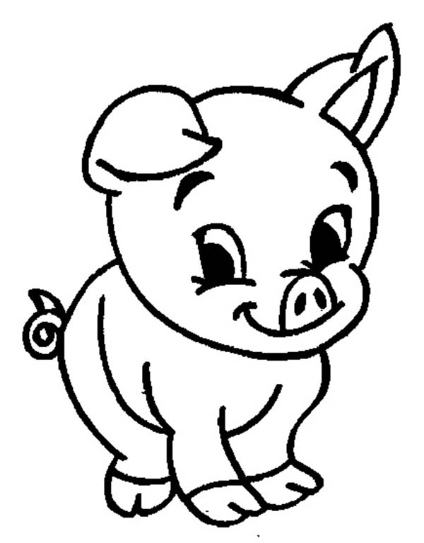 pig to colour pig coloring pages getcoloringpagescom to colour pig
