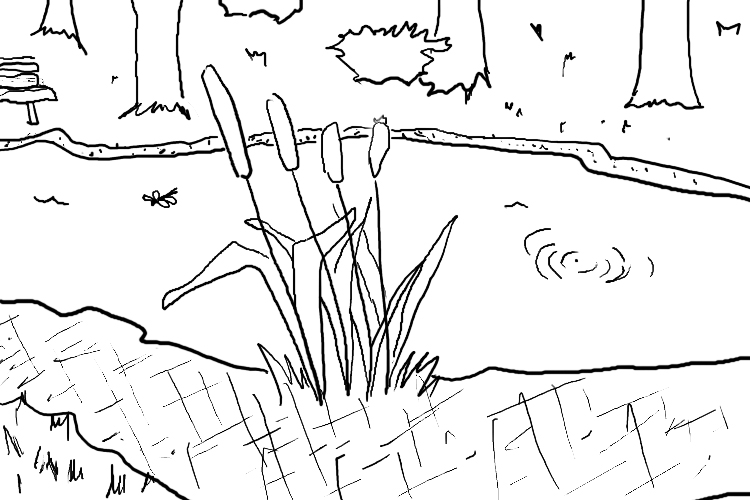 pond coloring pages 129 cattails a daily doodle pages pond coloring