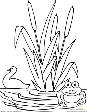 pond coloring pages color the pond worksheet educationcom coloring pond pages