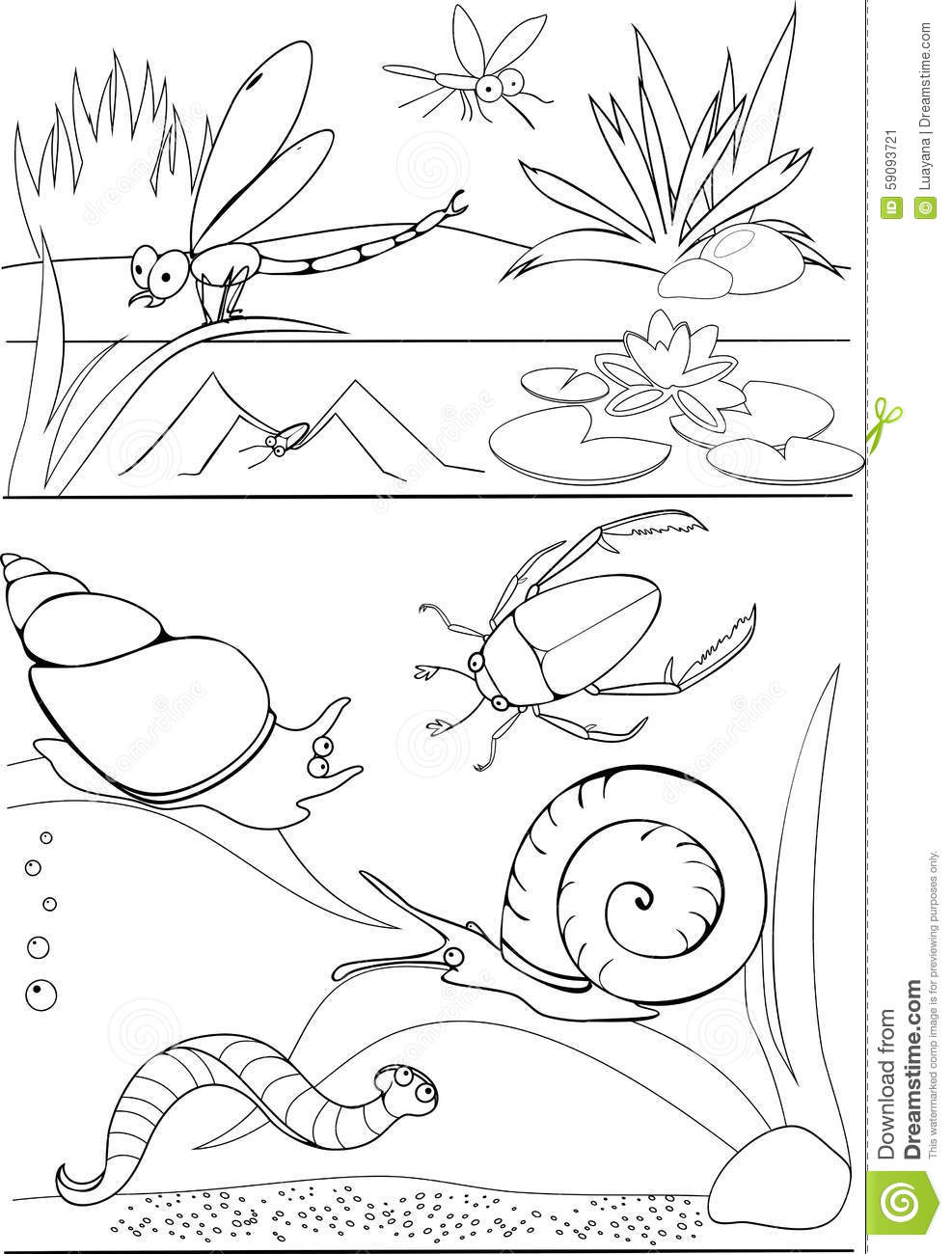 pond coloring pages coloring pond stock vector illustration of design coloring pages pond