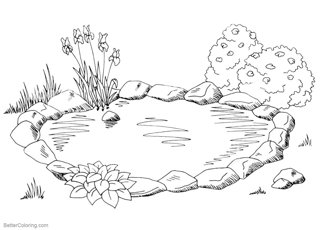 pond coloring pages pond coloring pages sketch free printable coloring pages pages coloring pond