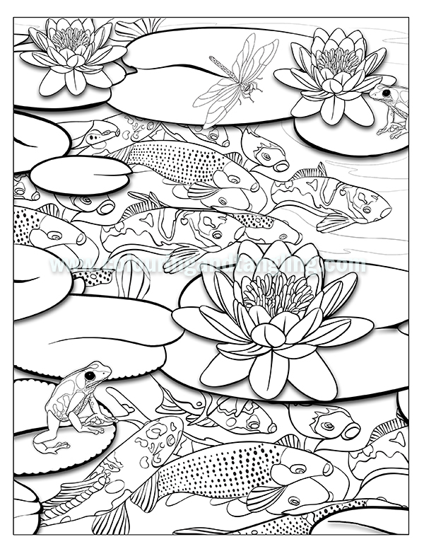 pond coloring pages pond drawing at getdrawings free download coloring pages pond