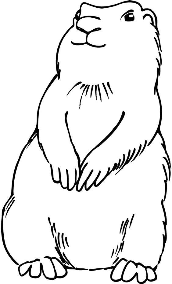 prairie dog pictures to print free prairie dog coloring pages prairie dog print pictures to
