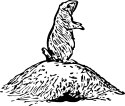 prairie dog pictures to print prairie dog coloring page at getcoloringscom free to prairie pictures print dog