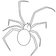 printable black spiders free printable spider coloring pages for kids cool2bkids printable black spiders
