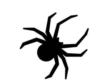 printable black spiders spiders coloring pages free coloring pages black spiders printable