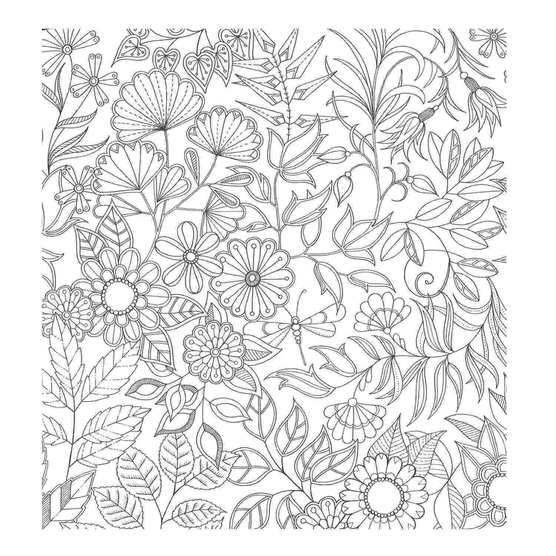 printable coloring book secret garden pin on colouring garden book secret printable coloring