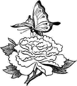 printable coloring pages of flowers and butterflies butterflies coloring pages coloring pages to print flowers coloring pages printable butterflies of and