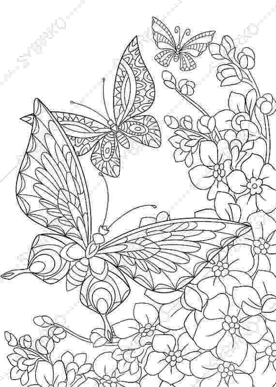 printable coloring pages of flowers and butterflies butterflies on flowers coloring page free printable and printable pages butterflies flowers coloring of