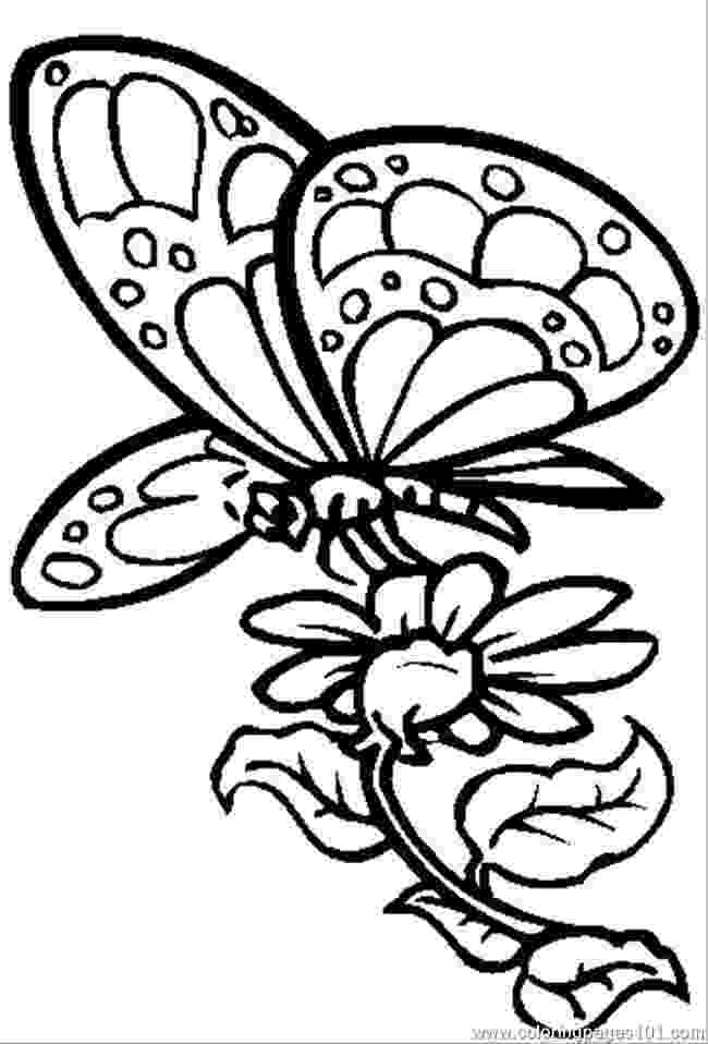 printable coloring pages of flowers and butterflies butterfly coloring page printable of and pages flowers butterflies coloring
