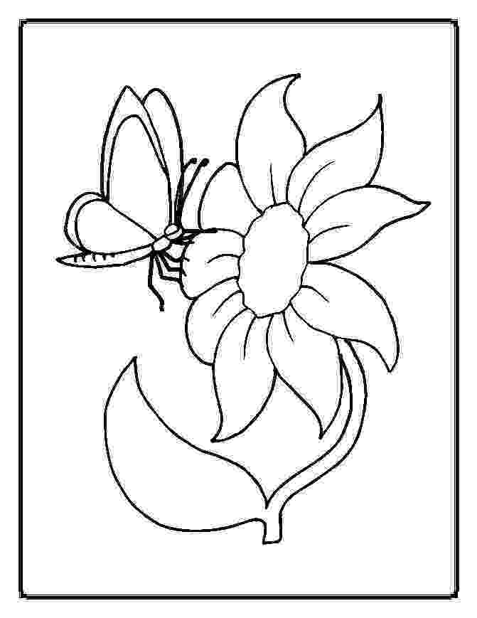 printable coloring pages of flowers and butterflies flowers and butterflies coloring page getcoloringpagescom flowers of printable butterflies and pages coloring