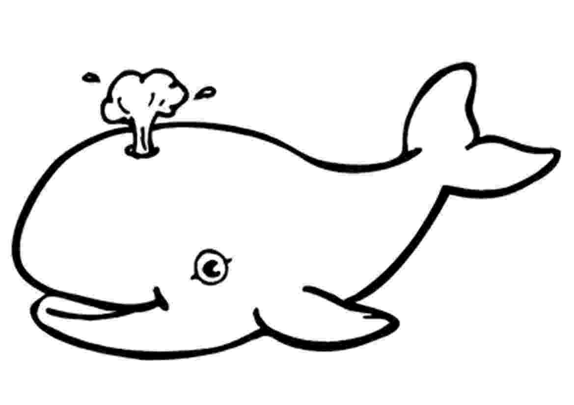 printable pictures of whales 20 free printable whale coloring pages everfreecoloringcom of printable pictures whales
