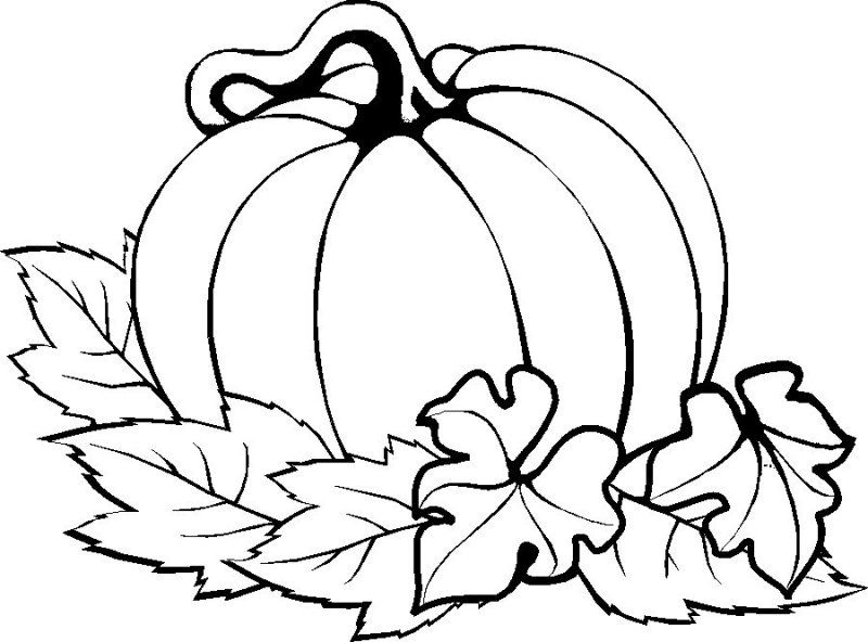 printable pumpkin pictures best pumpkin outline printable 22948 clipartioncom pumpkin pictures printable