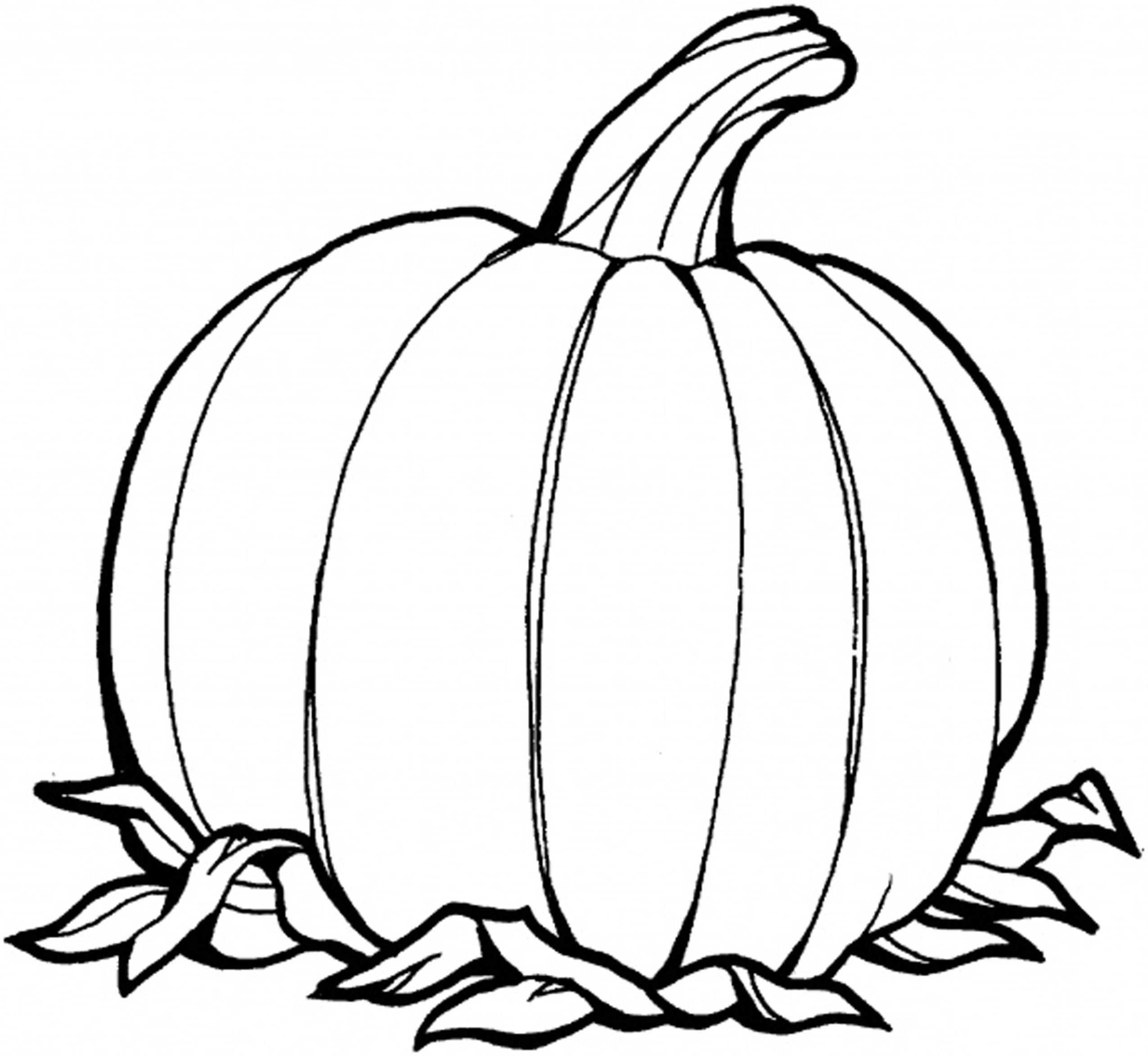 printable pumpkin pictures free printable pumpkin coloring pages for kids cool2bkids pictures printable pumpkin