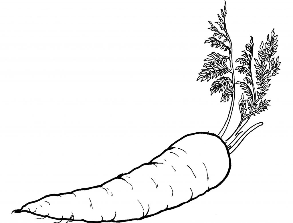printable vegetable coloring pages free printable fruit and vegetables color page coloring vegetable printable coloring pages