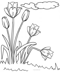printable watercolor pages free printable dragonfly coloring pages for kids printable watercolor pages