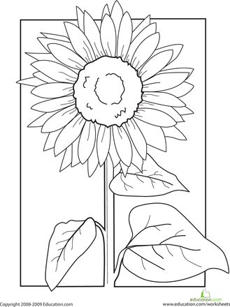printable watercolor pages pictures for kids to paint coloring home watercolor pages printable