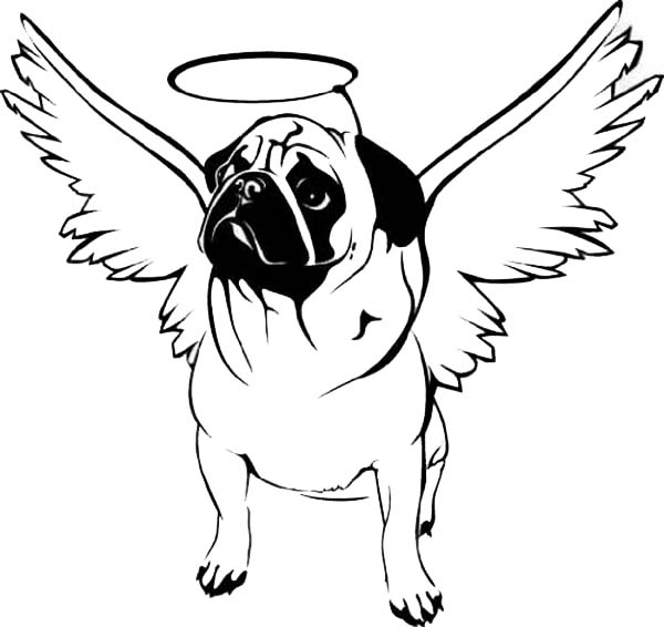 pug coloring pages pug coloring pages getcoloringpagescom coloring pug pages