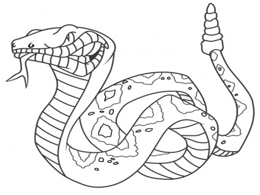 python pictures to color python to color pictures python to color pictures