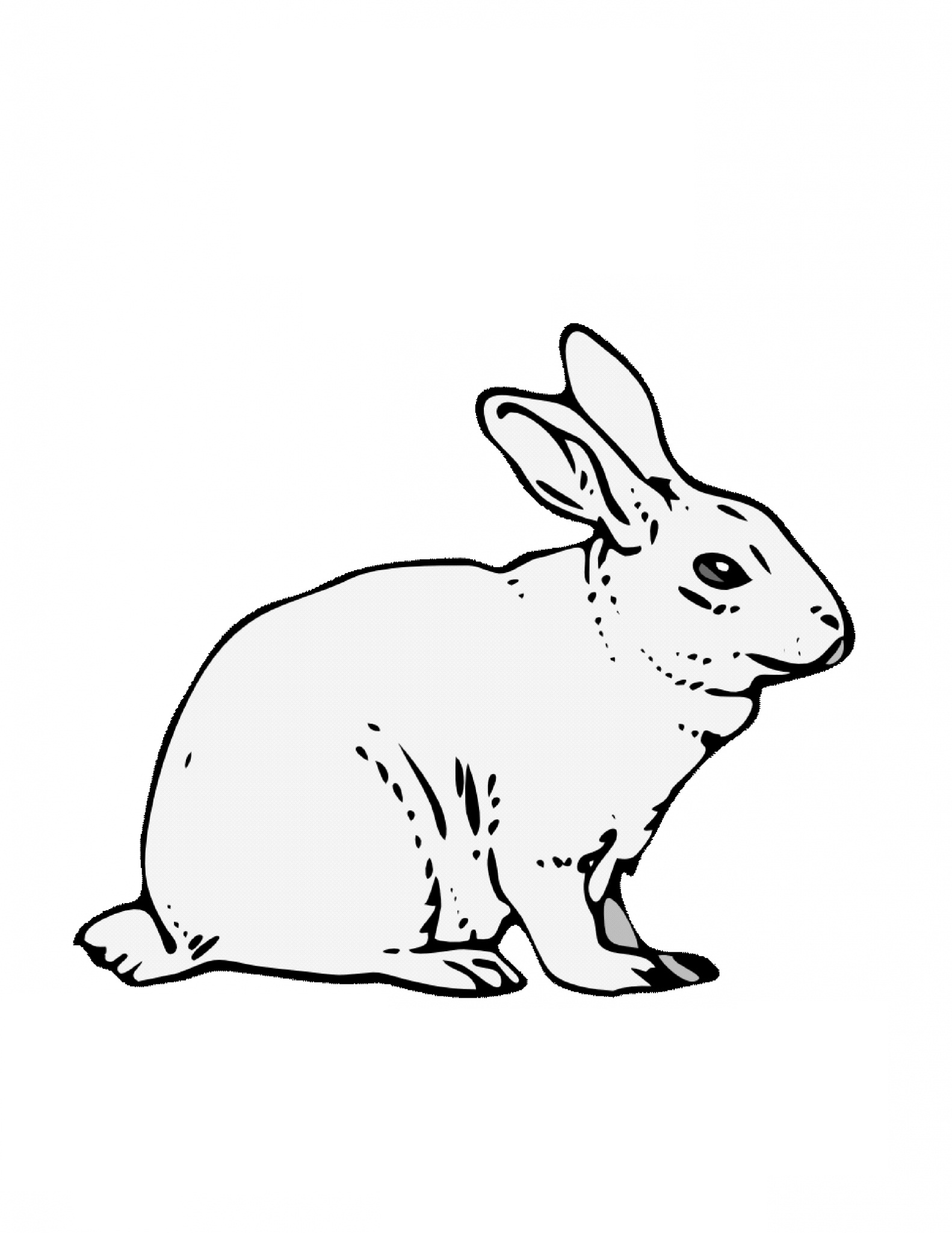 rabbit color page free printable rabbit coloring pages for kids rabbit page color 1 2