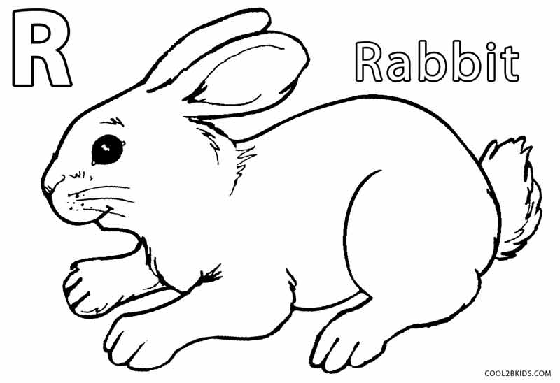 rabbit color page printable rabbit coloring pages for kids cool2bkids color rabbit page
