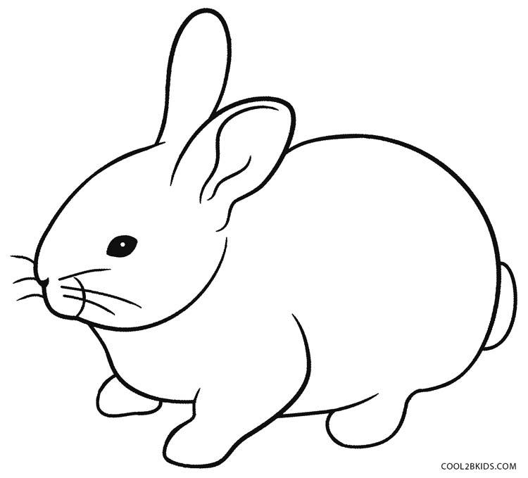 rabbit color pages free printable rabbit coloring pages for kids rabbit color pages