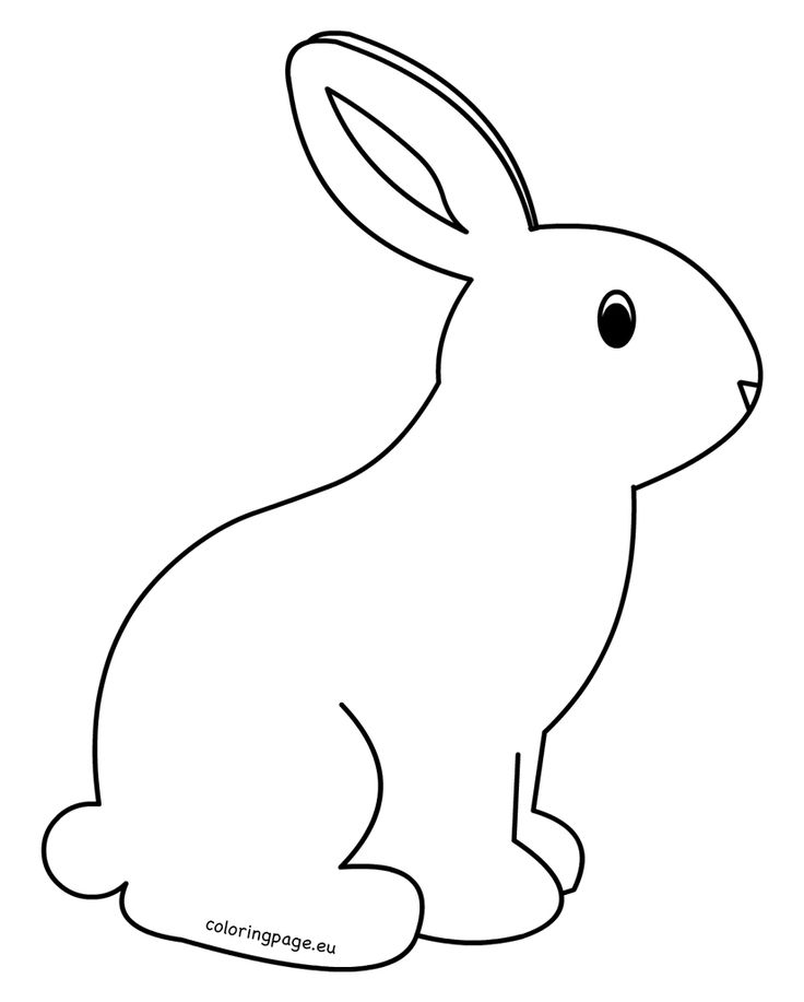 rabbit pictures for kids top 5 printable easter coloring pages for kids free pictures for rabbit kids