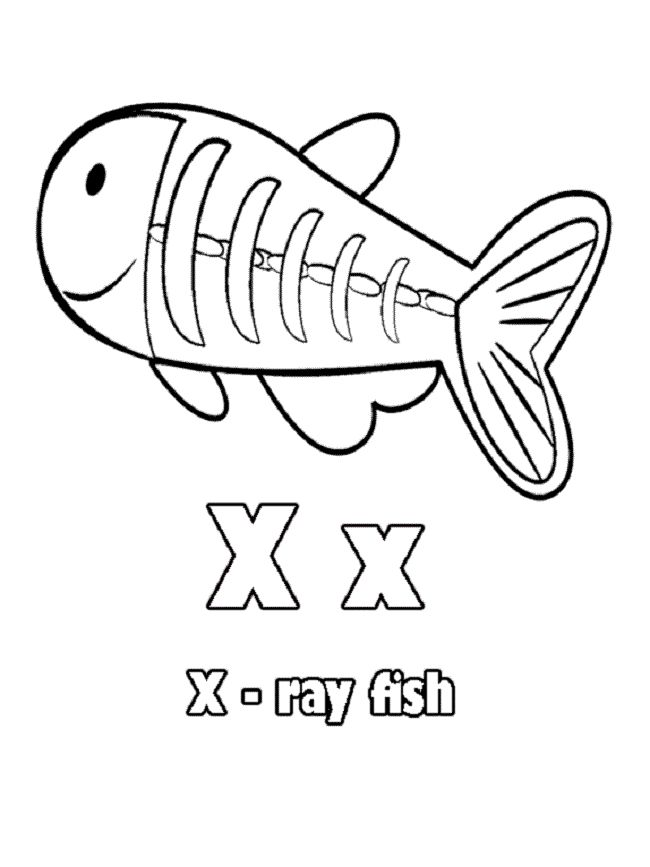 ray printable coloring pages cownose and bull eagle rays coloring page free printable ray coloring printable pages