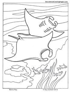 ray printable coloring pages manta ray coloring page coloring pages cool coloring printable pages ray coloring