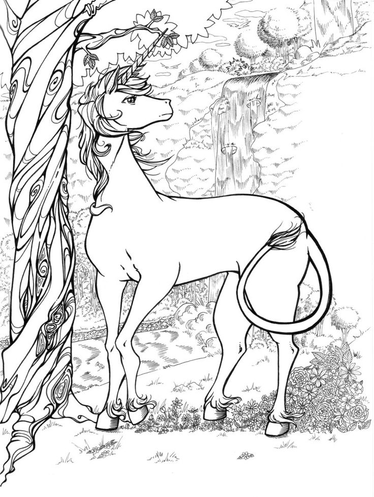 realistic coloring pages realistic dragon coloring pages for adults coloring home pages realistic coloring