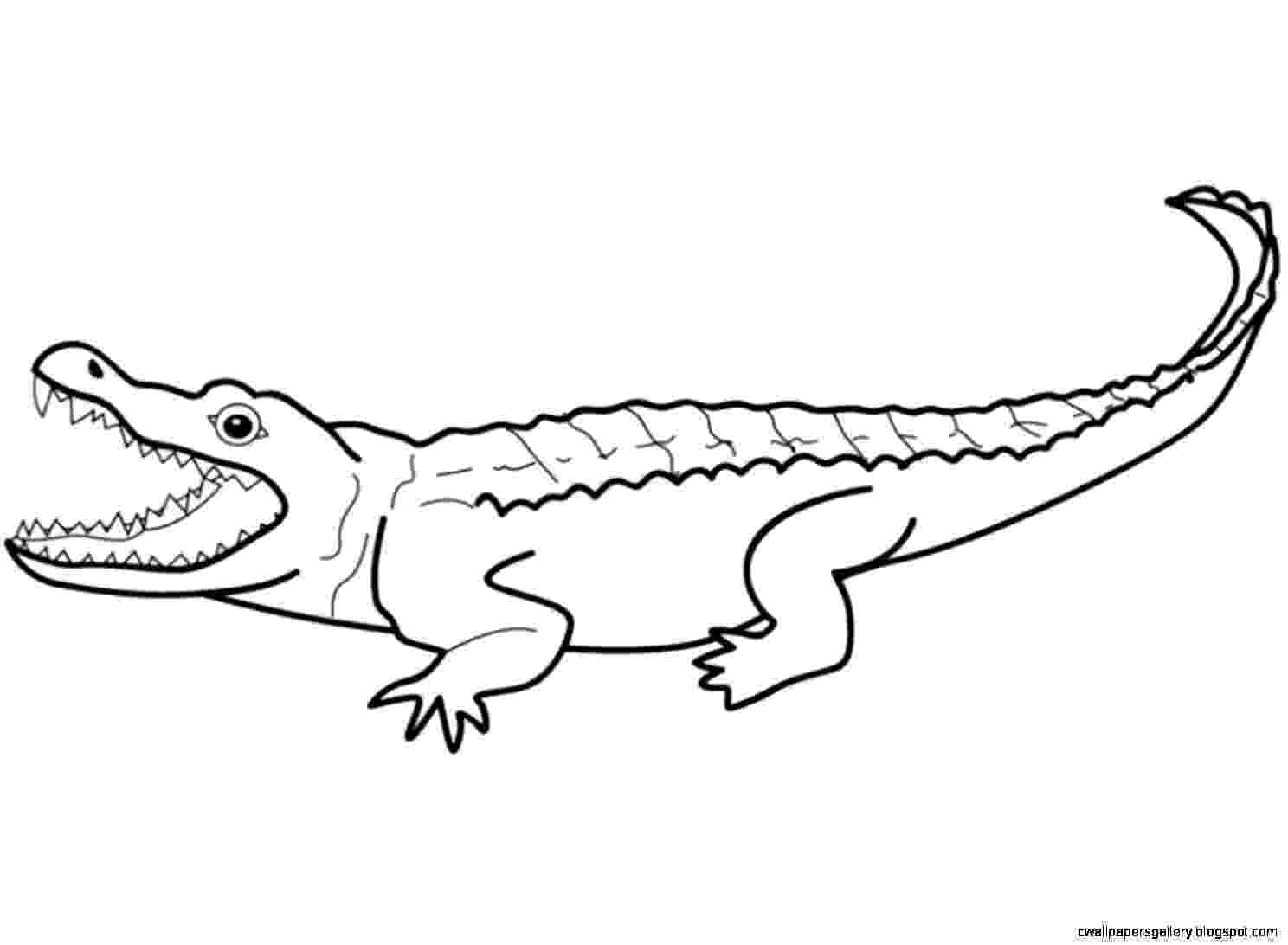reptile coloring pages bugs and reptiles to color coloring reptile pages