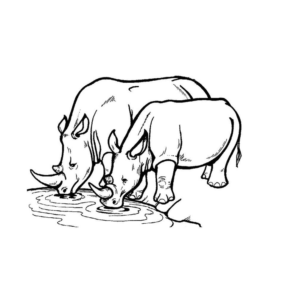 rhinoceros coloring page 13 coloring pictures rhinoceros print color craft rhinoceros coloring page