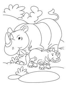 rhinoceros coloring page rhinoceros coloring pages getcoloringpagescom coloring rhinoceros page