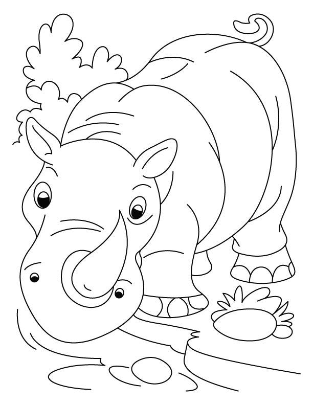rhinoceros coloring page rhinoceros free printable templates coloring pages rhinoceros coloring page
