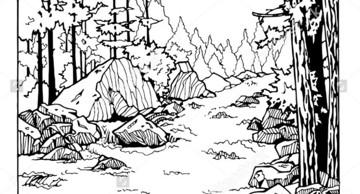 river coloring pages a river in the forest coloring page free printable river coloring pages