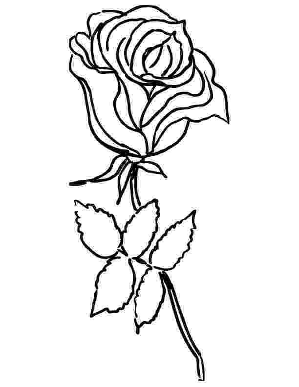 roses color pages free printable roses coloring pages for kids pages roses color