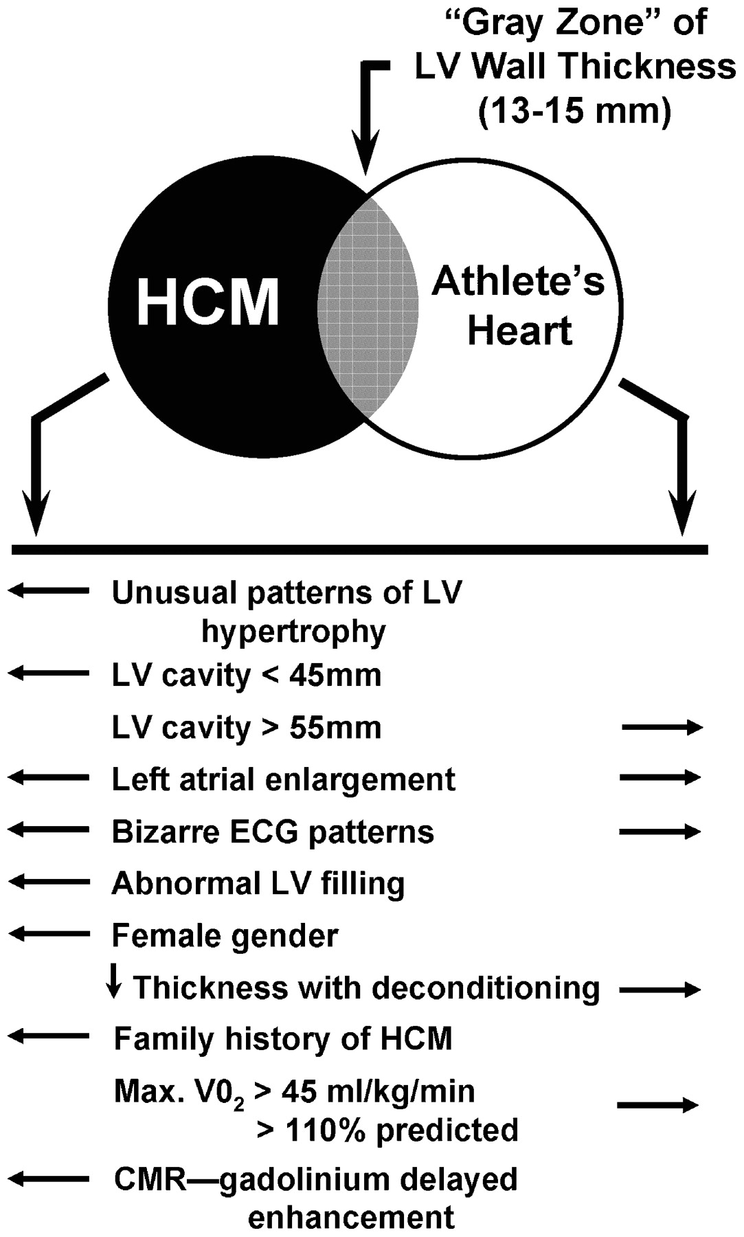 s in a heart distinguishing hypertrophic cardiomyopathy from athletes in s heart a