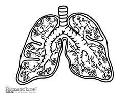 science themed coloring pages free science themed coloring pages featuring simple black pages coloring themed science