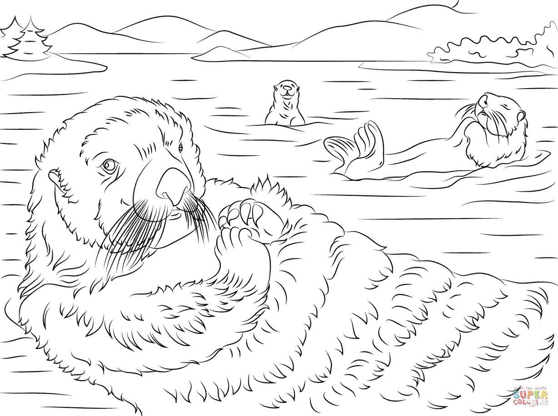 sea otter coloring page sea otter portrait coloring page supercoloringcom coloring sea page otter