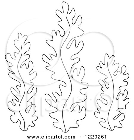 sea plants coloring pages coral reef design stock vector image 64376914 sea plants pages coloring