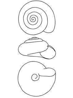 sea snail coloring page sea snail coloring page at getcoloringscom free snail page coloring sea