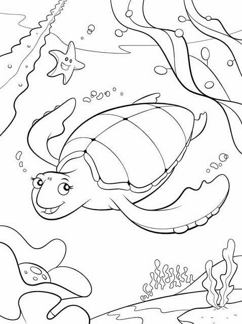 sea turtle coloring page realistic hawksbill sea turtle coloring page free turtle sea coloring page