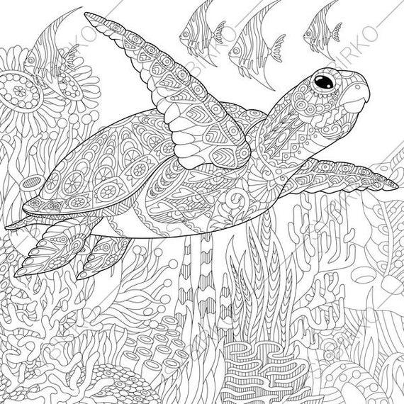 sea turtle coloring page sea plants coloring pages coloring turtle page sea