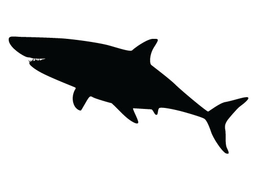 shark silouette categorysharks in art wikimedia commons silouette shark