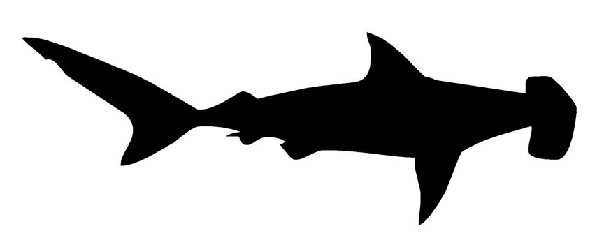 shark silouette great white shark silhouette at getdrawingscom free for silouette shark